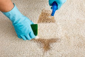 Removing stains with different organic and chemical cleaning products