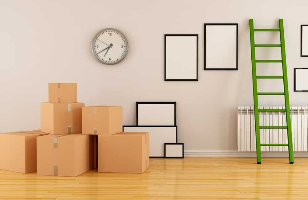 Move-Out Cleaning